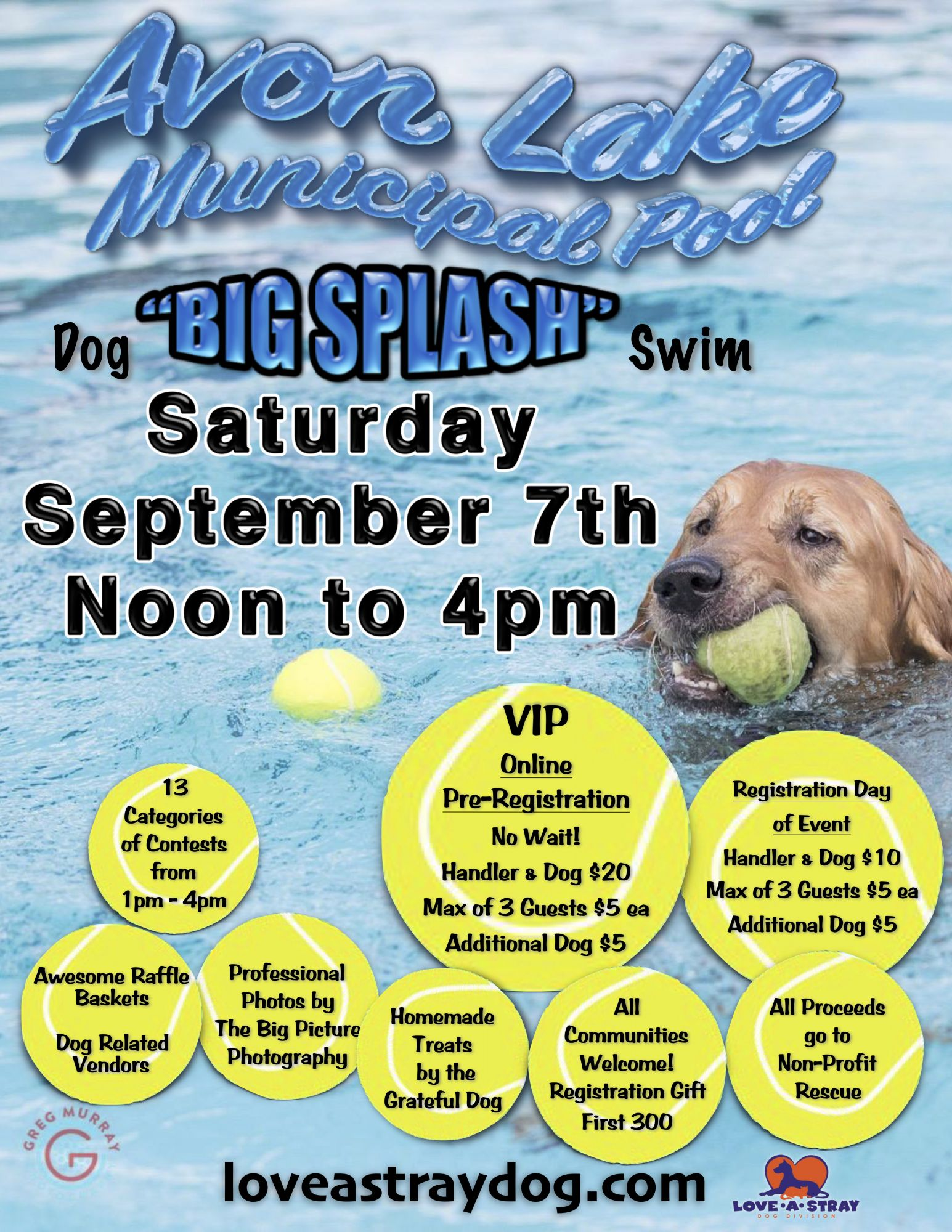 2019 Big Splash Dog Swim