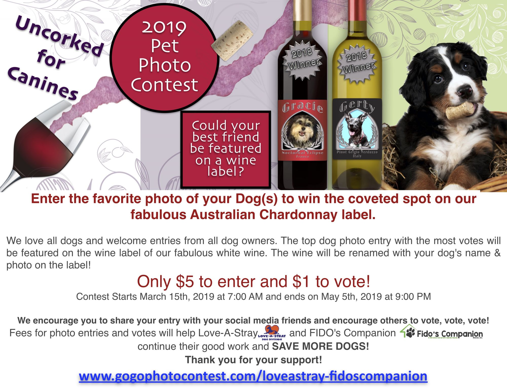 2019 GoGo Pet Photo Contest