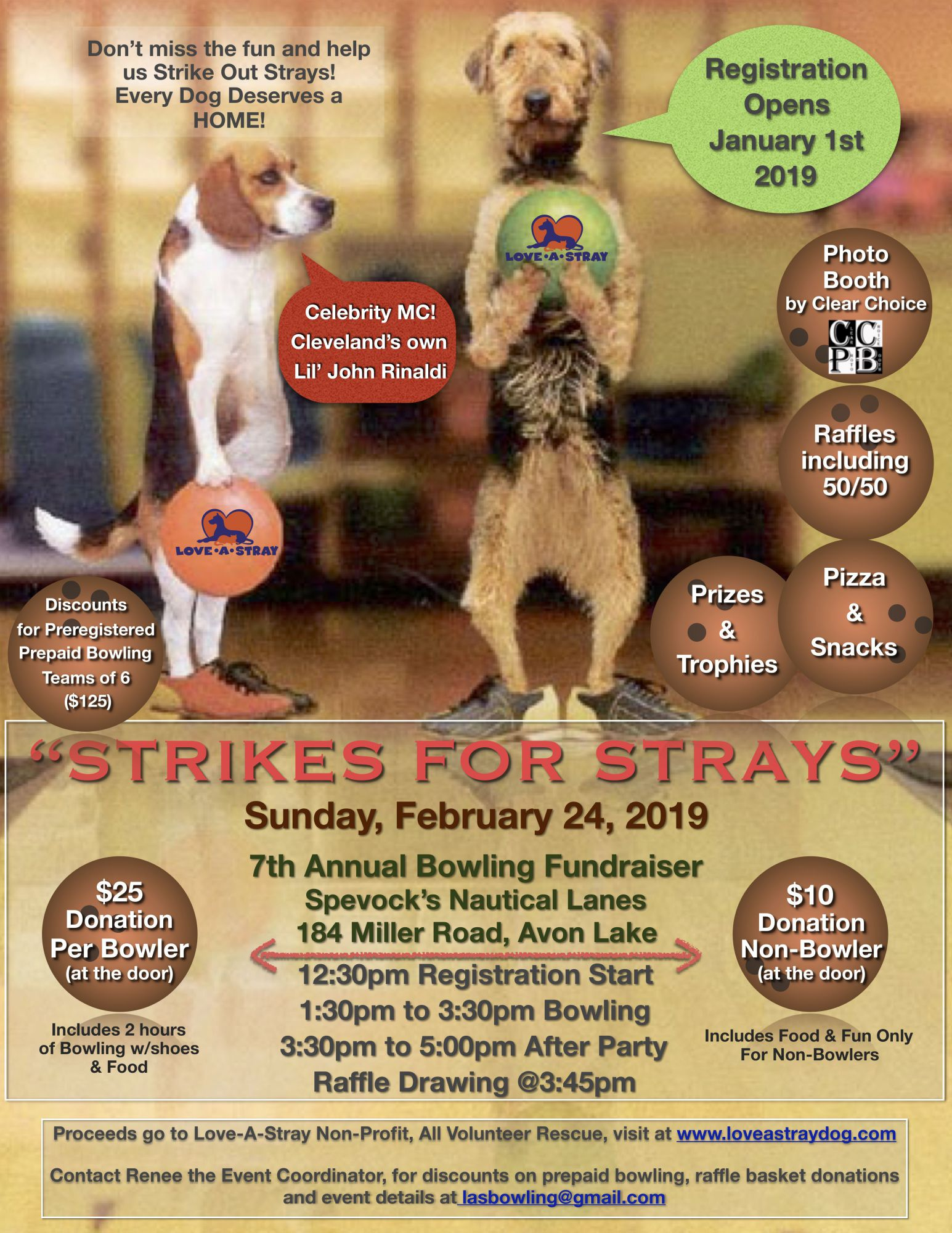 2019 Strikes for Strays