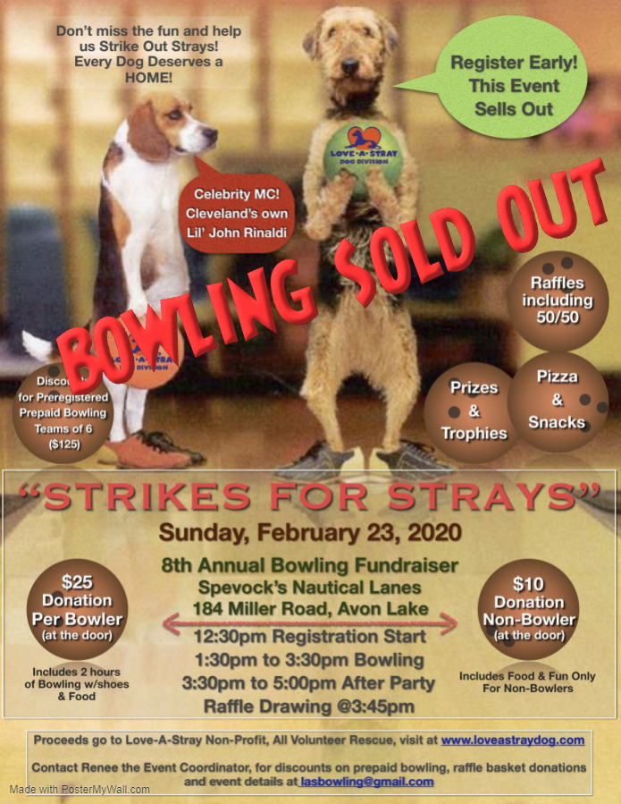 2020 Strikes for Strays