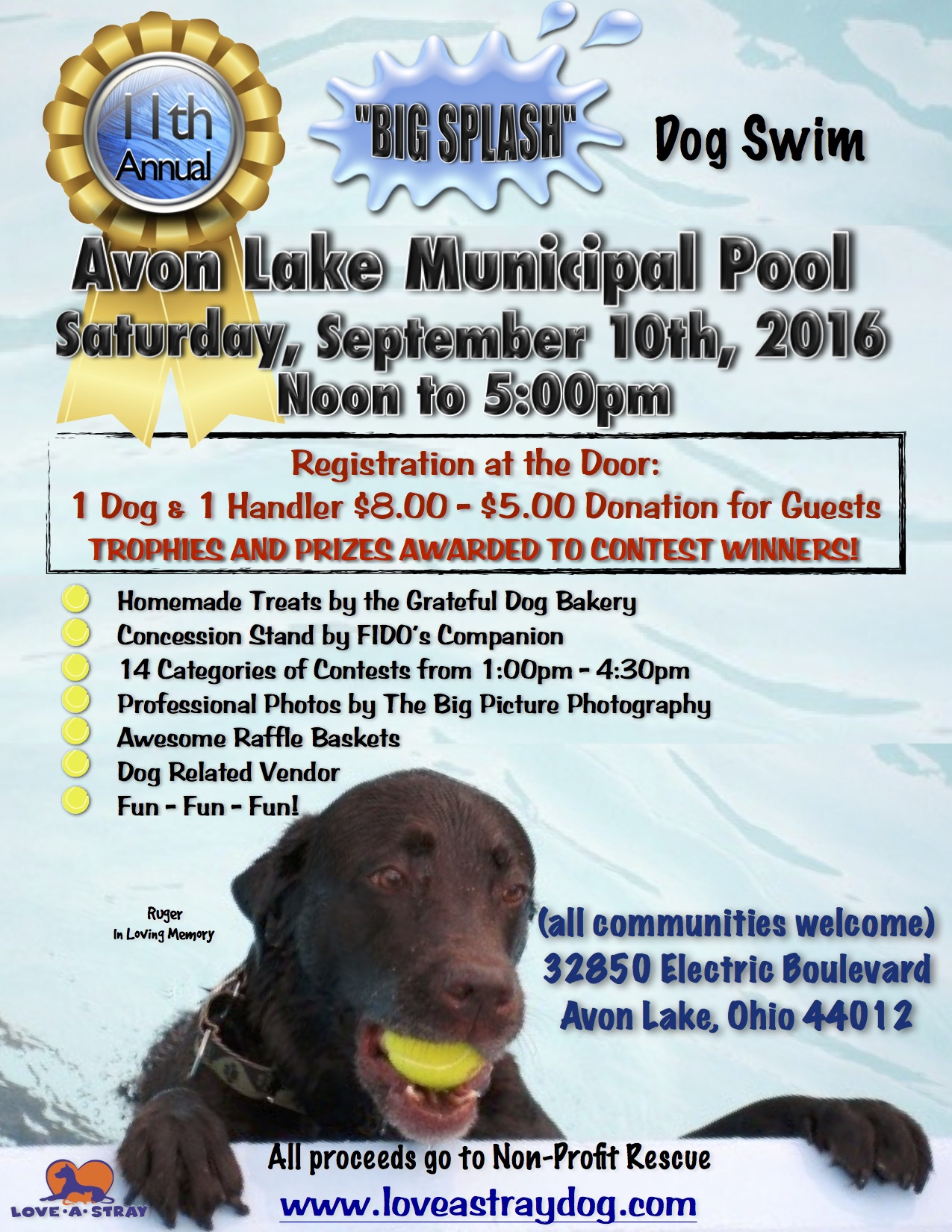 "2016 ""Big Splash"" Dog Swim"