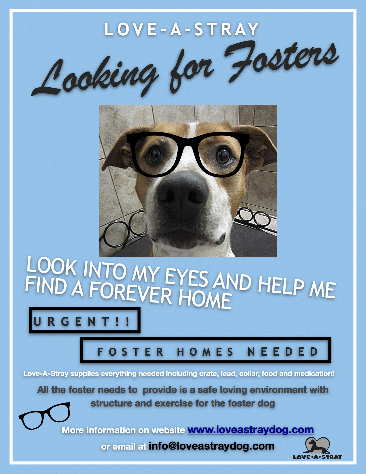 Fosters Needed