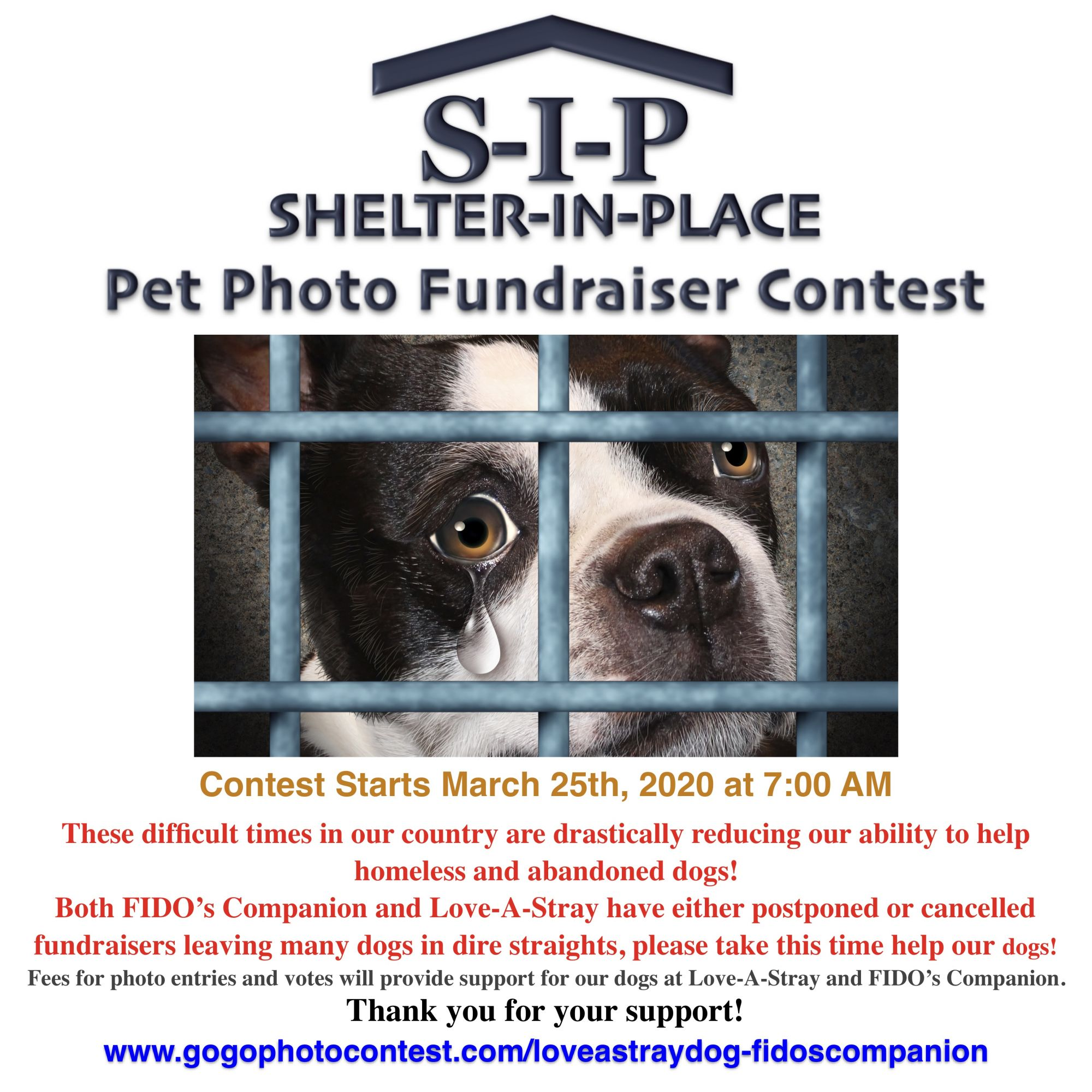 SIP Shelter in Place Photo Contest